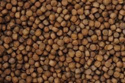 Hikari Koivoer mix - 5 liter