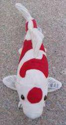 Pluche koi knuffel 35 cm - Kohaku