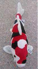 Pluche koi knuffel 35 cm - Showa