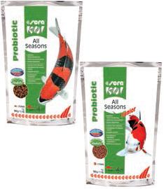 Sera Koi Junior All Season Probiotic - 500 gram