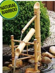 Waterornament vijver Bamboo