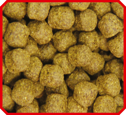 Vivani - Color 6 mm - 15 kilo 15 kilo zak