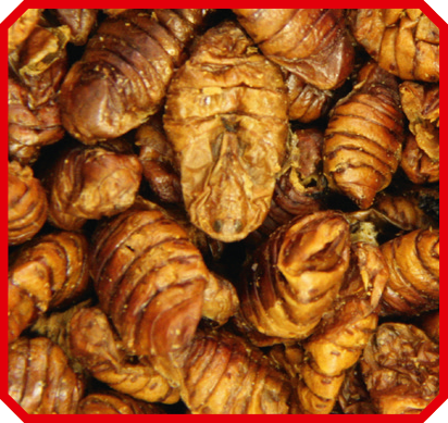Vivani Fishfood - Zijderupsen 2,5 liter
